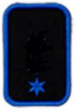 FiE 1